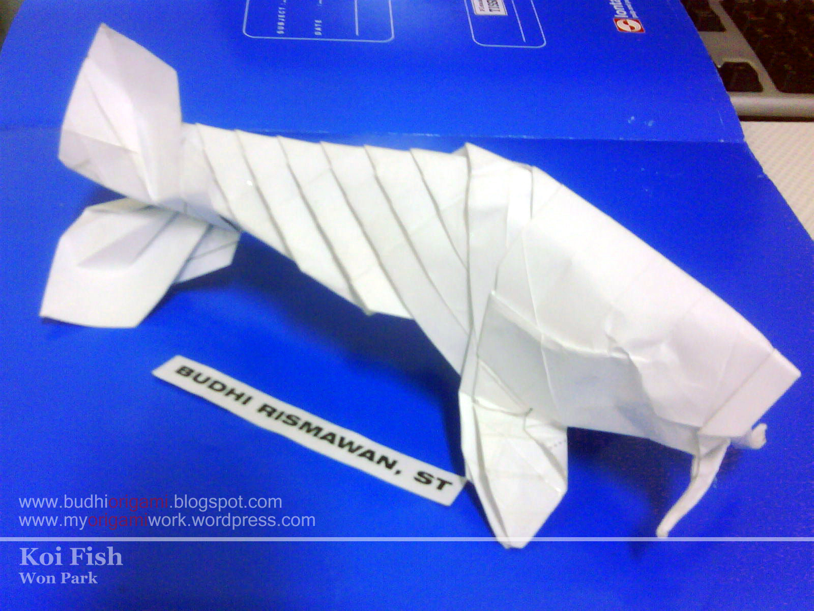 Medium origami myorigamiwork for Origami koi fish